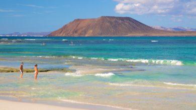 เกาะ fuerteventura