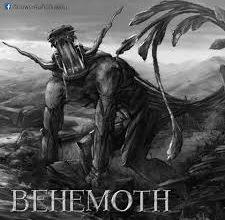 behemoth คือ